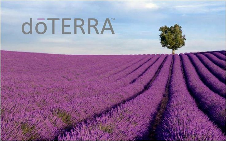 DoTERRA – The Global Wellness Multi-Level Marketing Company